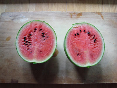 Watermelon2100808